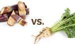 Beet Sugar vs. Cane Sugar: The Vegan Difference